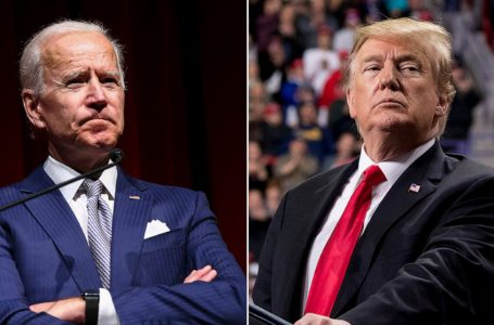 """<span class=""""entry-title-primary"""">Trump or Biden?!??</span> <span style=""""    display: none;""""> - </span><span class=""""entry-subtitle"""">US-2020 Elections: All you Need to Know in a Nutshell</span>"""